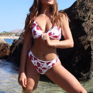 Bikini  Flamingo Free To Fly Print  7